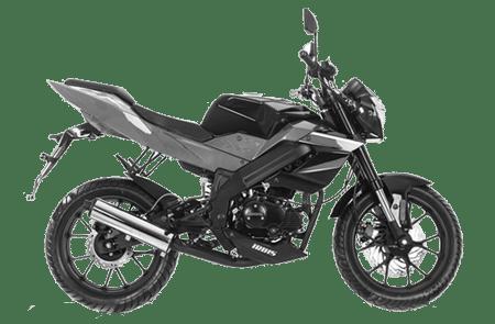 irbis-bs-250